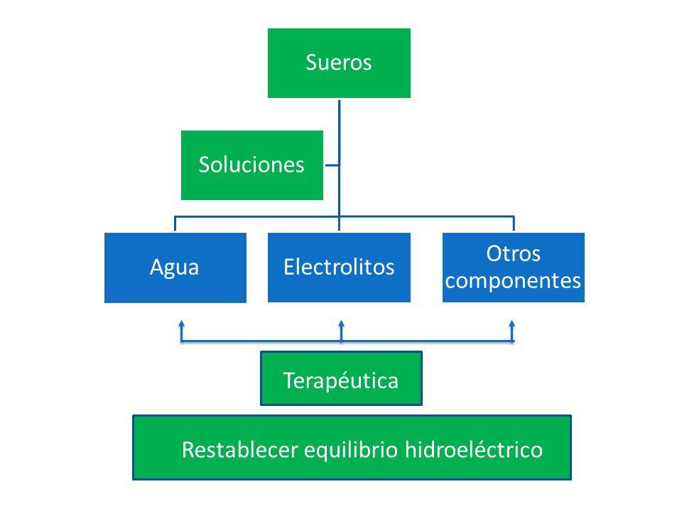 Sueros Agua Electrolitos Otros componentes Soluciones Terapéutica Restablecer equilibrio hidroeléctrico
