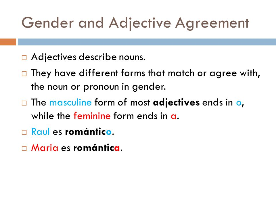 Gender and Adjective Agreement  Adjectives describe nouns.
