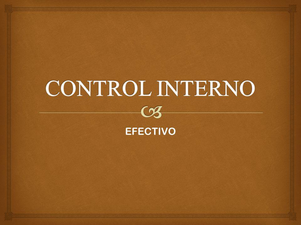   El control interno es una función que tiene por objeto salvaguardar y preservar los bienes de la empresa.