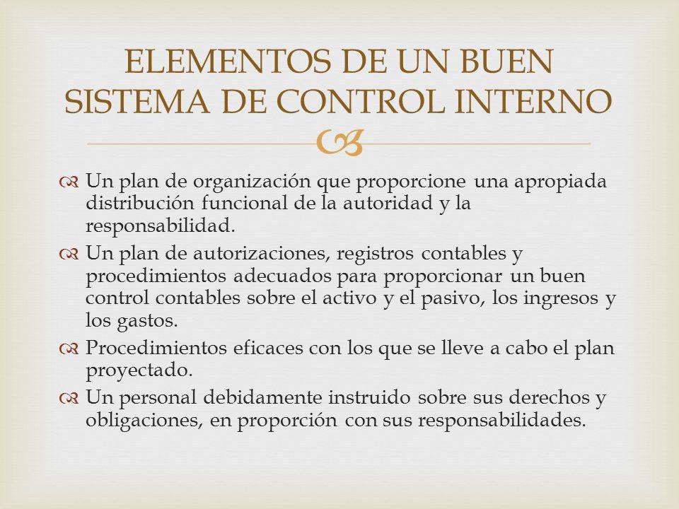   Un plan de organización que proporcione una apropiada distribución funcional de la autoridad y la responsabilidad.  Un plan de autorizaciones, re
