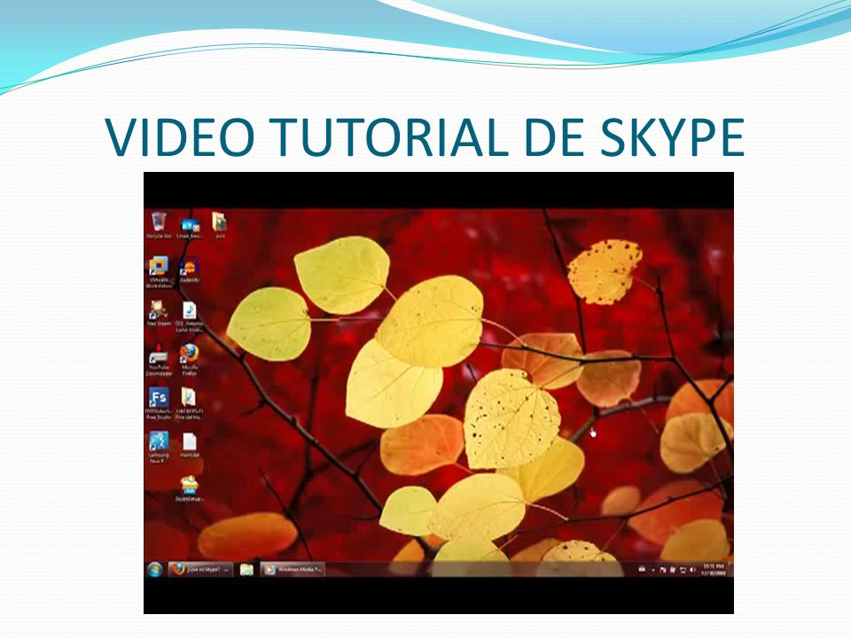 VIDEO TUTORIAL DE SKYPE