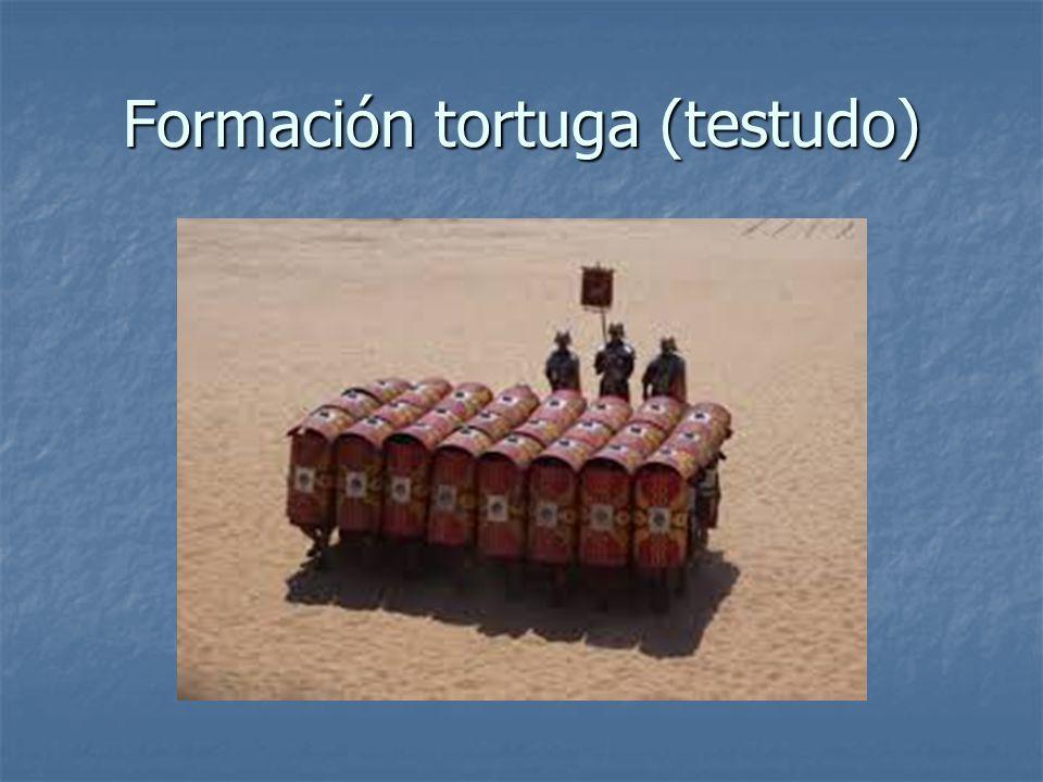 Formación tortuga (testudo)
