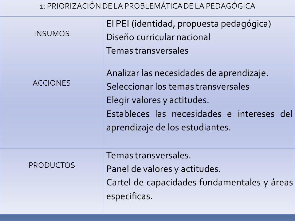 1: PRIORIZACIÓN DE LA PROBLEMÁTICA DE LA PEDAGÓGICA INSUMOS El PEI (identidad, propuesta pedagógica) Diseño curricular nacional Temas transversales ACCIONES Analizar las necesidades de aprendizaje.