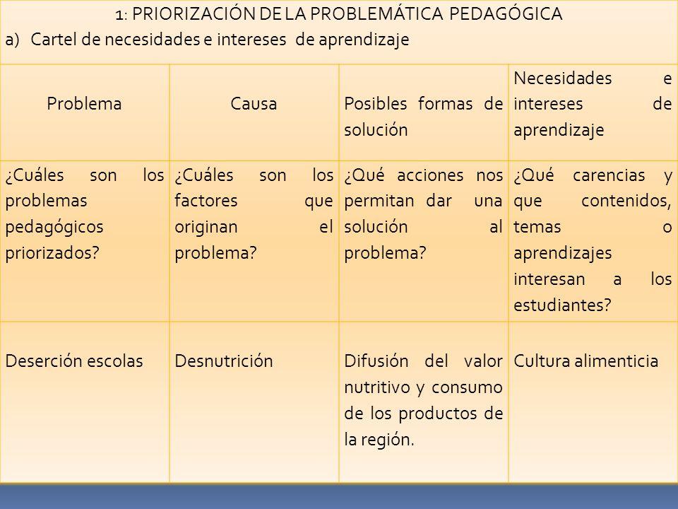 1: PRIORIZACIÓN DE LA PROBLEMÁTICA PEDAGÓGICA a)Cartel de necesidades e intereses de aprendizaje ProblemaCausa Posibles formas de solución Necesidades e intereses de aprendizaje ¿Cuáles son los problemas pedagógicos priorizados.