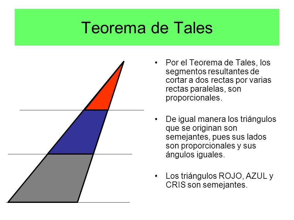 Por el Teorema de Tales, los segmentos resultantes de cortar a dos rectas por varias rectas paralelas, son proporcionales.