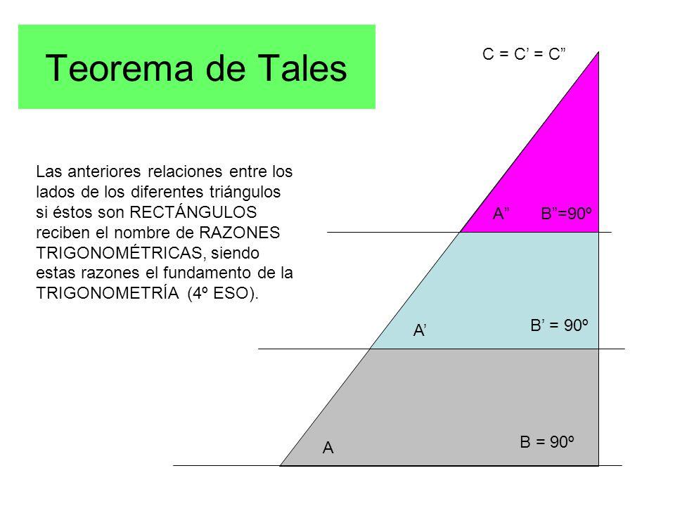 Teorema de Tales A A' A B = 90º B' = 90º B =90º C = C' = C Las anteriores relaciones entre los lados de los diferentes triángulos si éstos son RECTÁNGULOS reciben el nombre de RAZONES TRIGONOMÉTRICAS, siendo estas razones el fundamento de la TRIGONOMETRÍA (4º ESO).