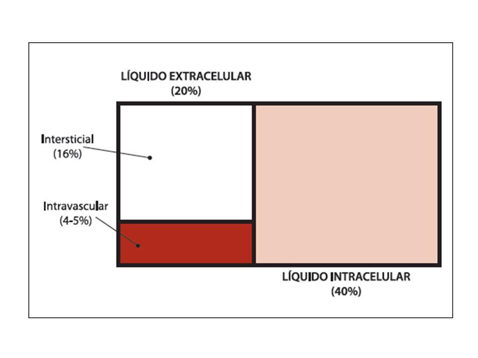 Corrección de elecrolitos Hipokalemia: – Reto de potasio: 0.5 mEq/Lt + 30 ml de Dextrosa al 5%.