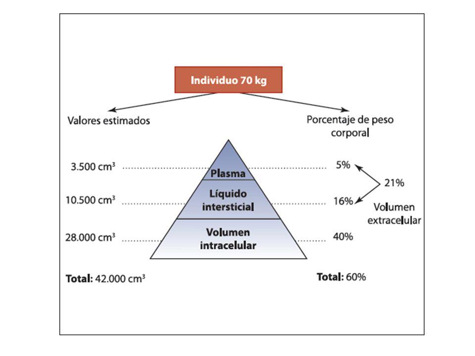 Corrección de elecrolitos Hiperkalemia: – Gluconato de calcio 10%, con control de FC, 0.5 – 2 ml/kg cada 8 horas.