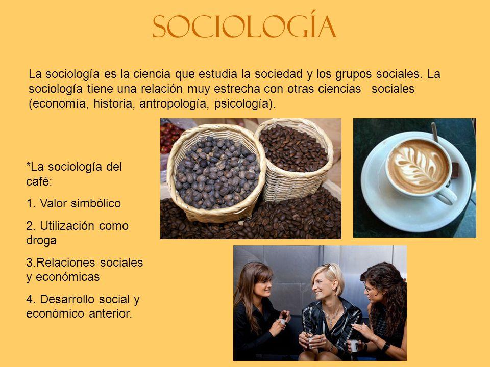 Sociología La sociología es la ciencia que estudia la sociedad y los grupos sociales.