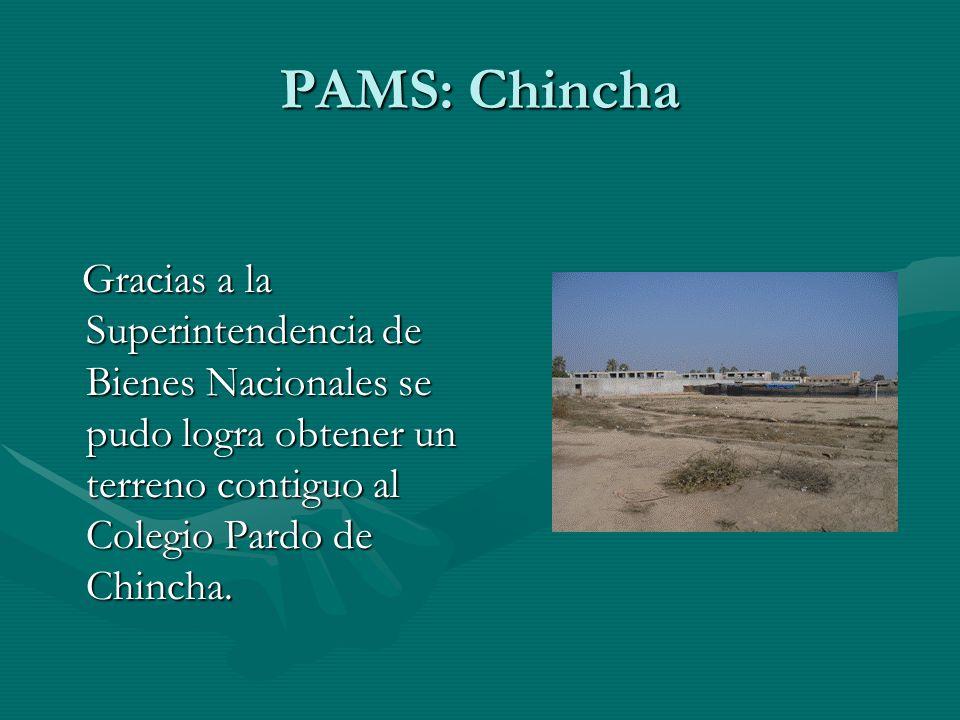 Gracias a la Superintendencia de Bienes Nacionales se pudo logra obtener un terreno contiguo al Colegio Pardo de Chincha.