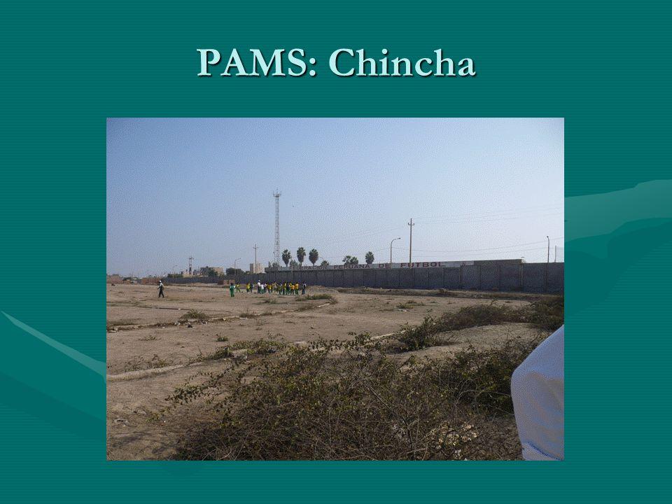 PAMS: Chincha