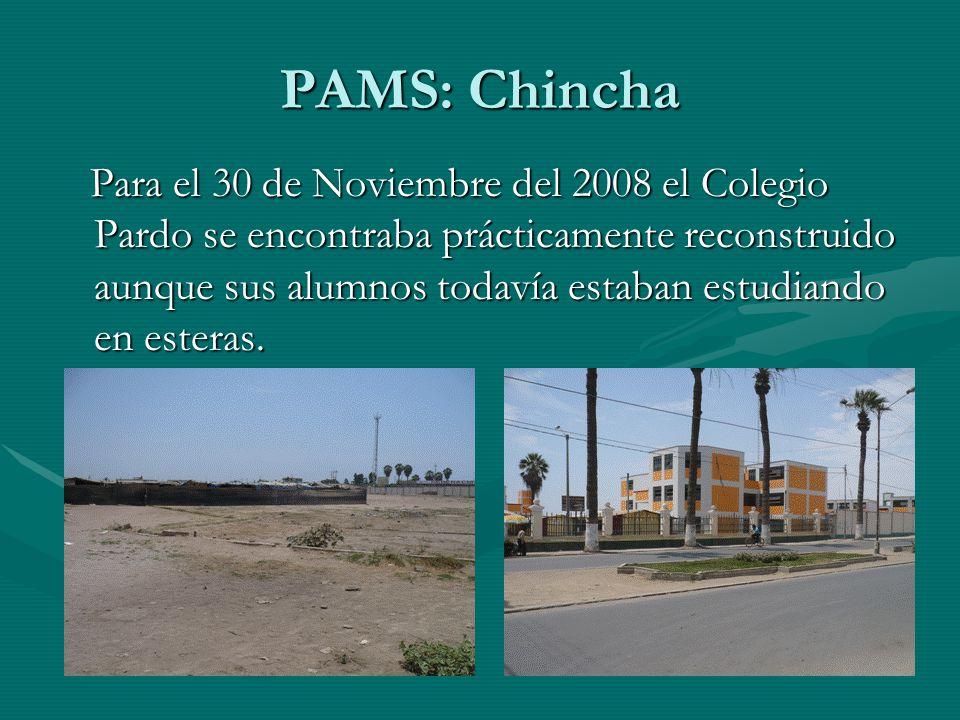 Para el 30 de Noviembre del 2008 el Colegio Pardo se encontraba prácticamente reconstruido aunque sus alumnos todavía estaban estudiando en esteras.