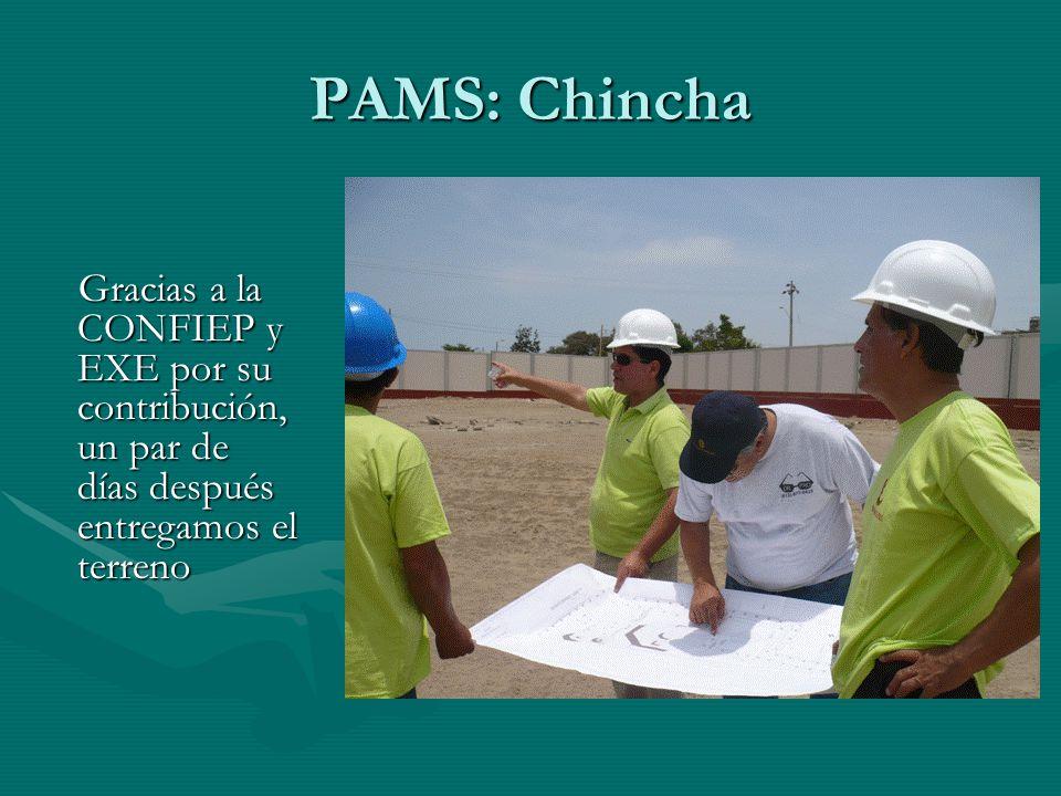 PAMS: Chincha Gracias a la CONFIEP y EXE por su contribución, un par de días después entregamos el terreno Gracias a la CONFIEP y EXE por su contribución, un par de días después entregamos el terreno