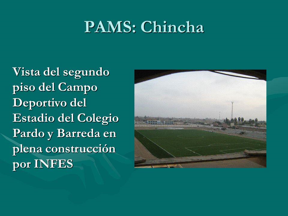 Vista del segundo piso del Campo Deportivo del Estadio del Colegio Pardo y Barreda en plena construcción por INFES