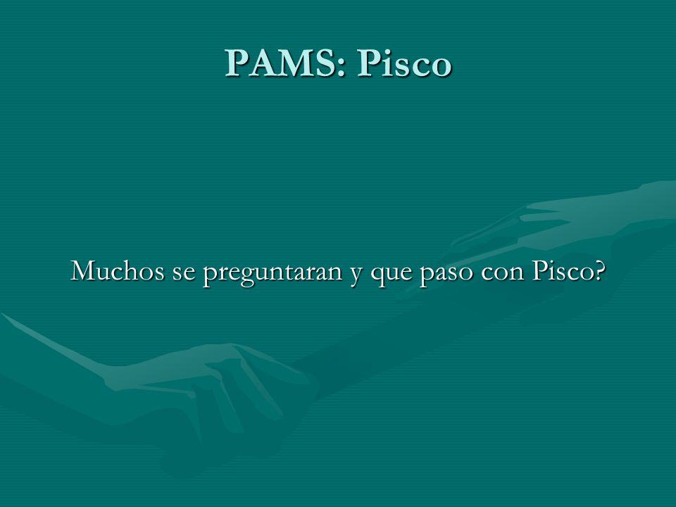 PAMS: Pisco Muchos se preguntaran y que paso con Pisco