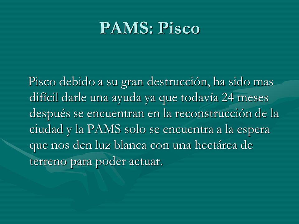 PAMS: Pisco Pisco debido a su gran destrucción, ha sido mas difícil darle una ayuda ya que todavía 24 meses después se encuentran en la reconstrucción de la ciudad y la PAMS solo se encuentra a la espera que nos den luz blanca con una hectárea de terreno para poder actuar.