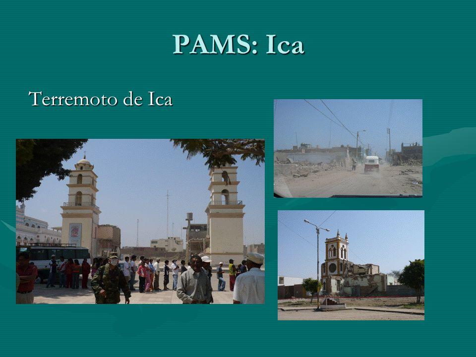 PAMS: Ica Terremoto de Ica