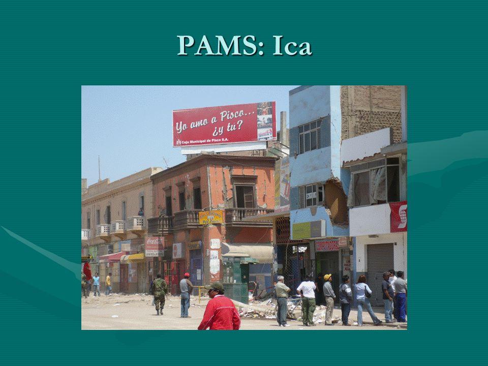 PAMS: Ica