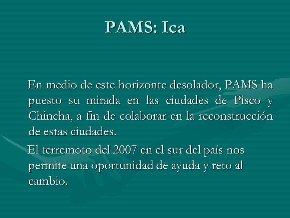 En medio de este horizonte desolador, PAMS ha puesto su mirada en las ciudades de Pisco y Chincha, a fin de colaborar en la reconstrucción de estas ciudades.