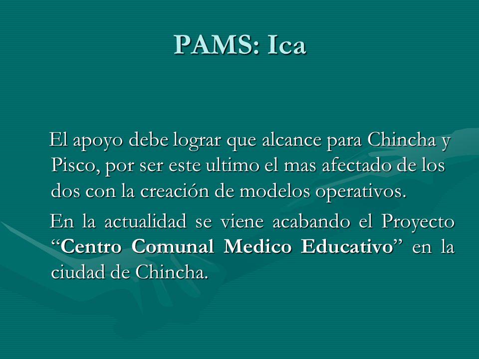 PAMS: Ica El apoyo debe lograr que alcance para Chincha y Pisco, por ser este ultimo el mas afectado de los dos con la creación de modelos operativos.