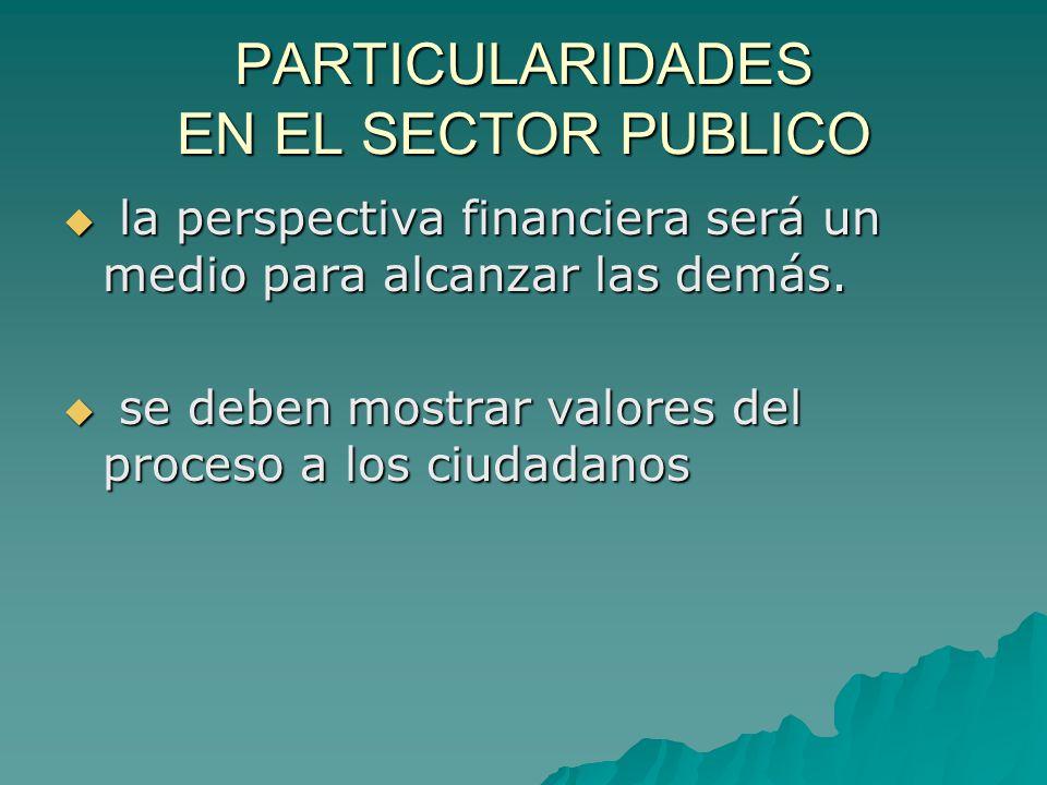 PARTICULARIDADES EN EL SECTOR PUBLICO  la perspectiva financiera será un medio para alcanzar las demás.