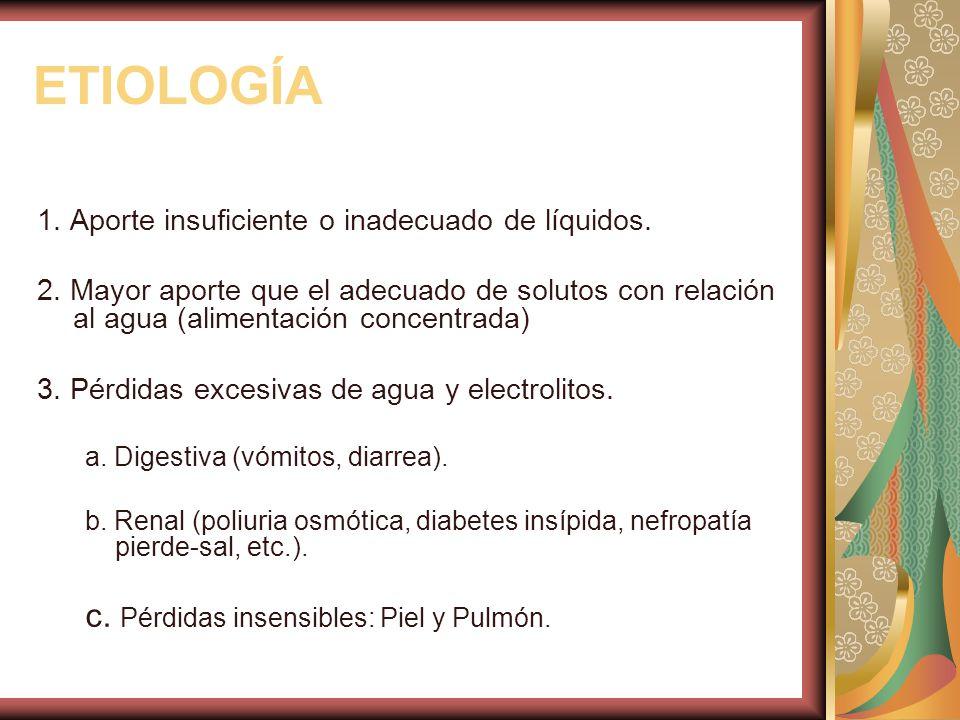 ETIOLOGÍA 1.Aporte insuficiente o inadecuado de líquidos.