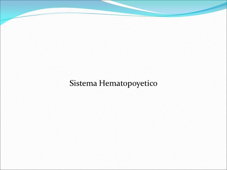 Sistema hematopoyético (Motivos de consulta) Palidez Rubicundez Hemorragia Adenomegalias Fiebre