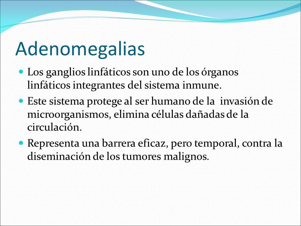 Adenomegalias Los ganglios linfáticos son uno de los órganos linfáticos integrantes del sistema inmune. Este sistema protege al ser humano de la invas