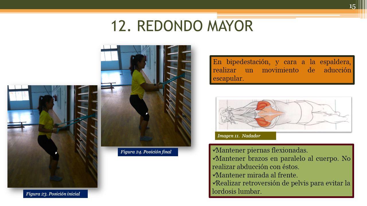 12.REDONDO MAYOR Mantener piernas flexionadas. Mantener brazos en paralelo al cuerpo.