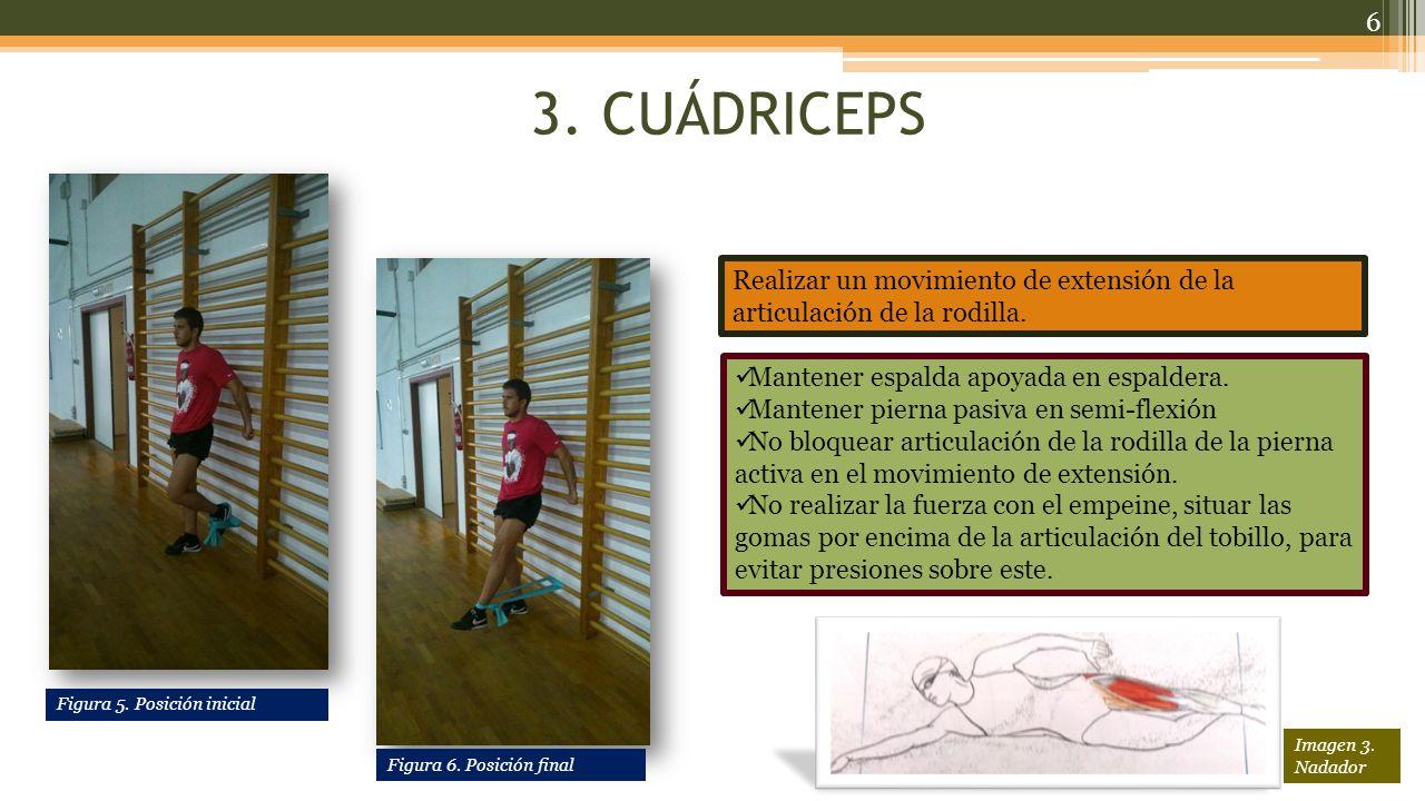 14.DELTOIDES POSTERIOR/TRAPECIO En bipedestación con piernas paralelas, realizar un movimiento de abducción con la articulación del hombro.