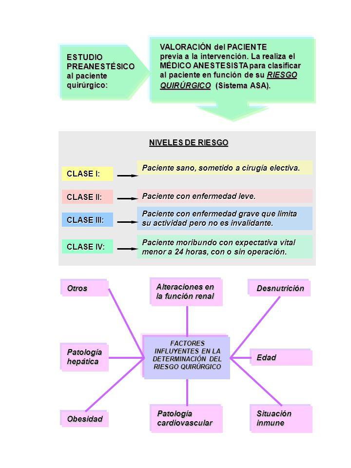 ESTUDIO PREANESTÉSICO al paciente quirúrgico: VALORACIÓN del PACIENTE previa a la intervención. La realiza el MÉDICO ANESTESISTA para clasificar al pa