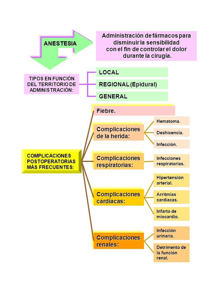 ANESTESIA Administración de fármacos para disminuir la sensibilidad con el fin de controlar el dolor durante la cirugía. durante la cirugía. TIPOS EN