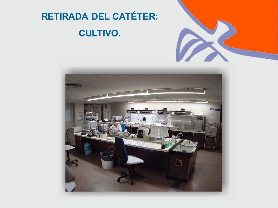 RETIRADA DEL CATÉTER: CULTIVO.