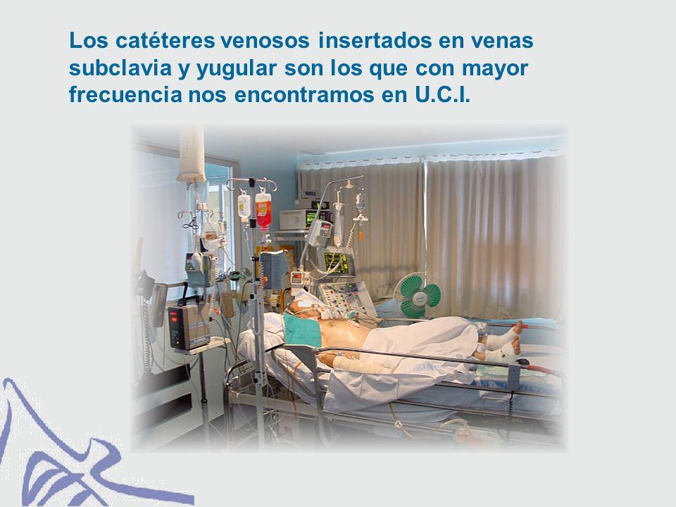 Los catéteres venosos insertados en venas subclavia y yugular son los que con mayor frecuencia nos encontramos en U.C.I.