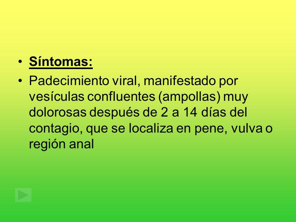 Síntomas: Padecimiento viral, manifestado por vesículas confluentes (ampollas) muy dolorosas después de 2 a 14 días del contagio, que se localiza en pene, vulva o región anal