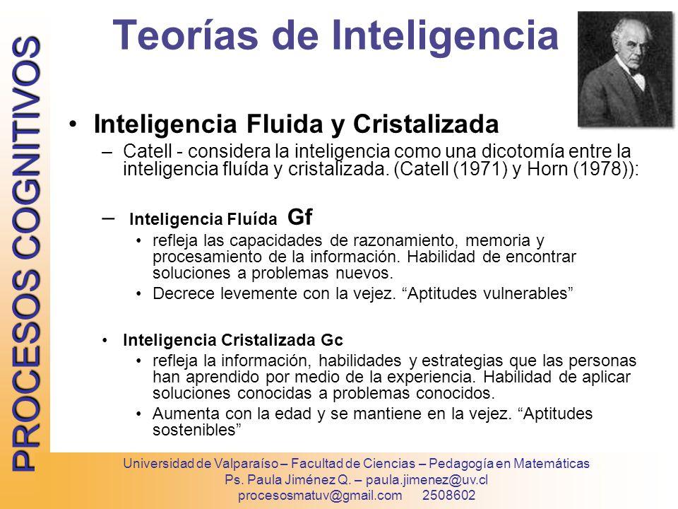 Teorias De La Inteligencia By Vzn8 On Genial Ly