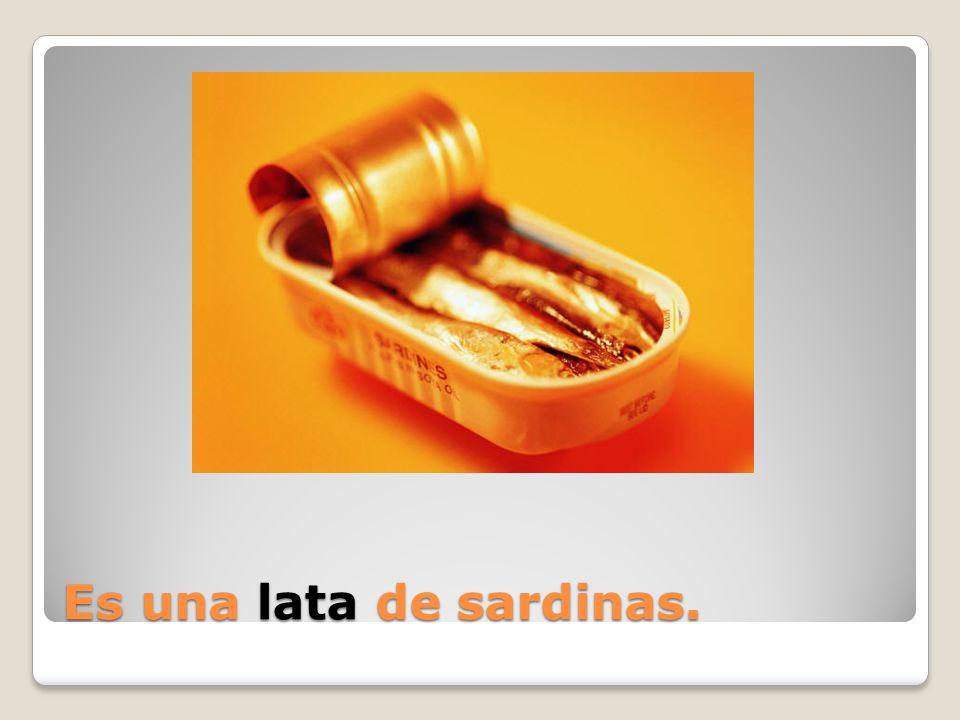Es una _____ de sardinas.