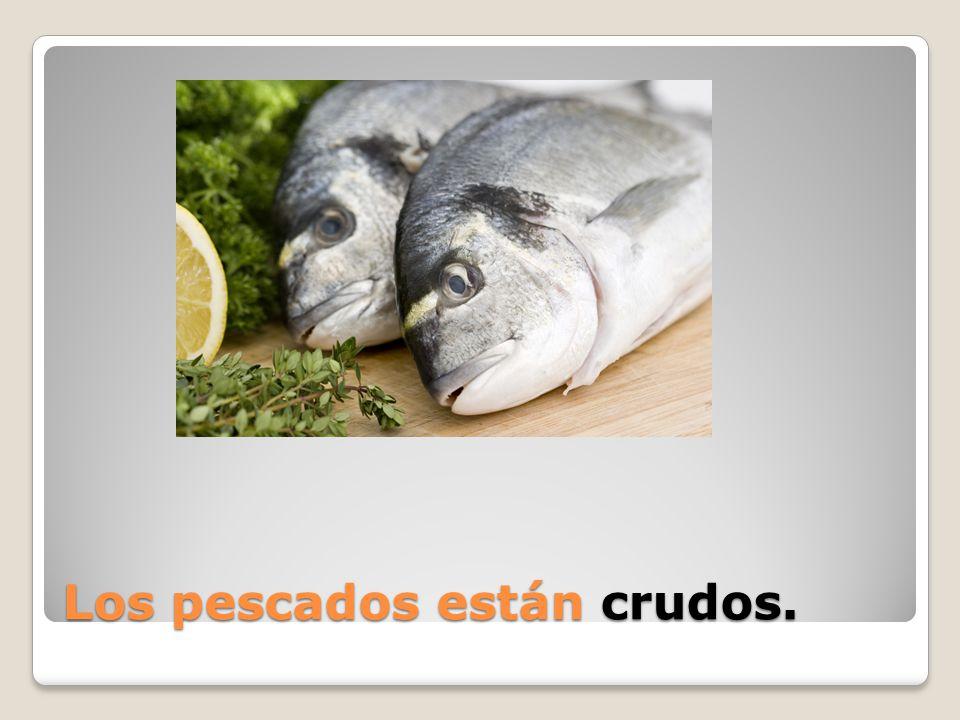 Los pescados están ______.