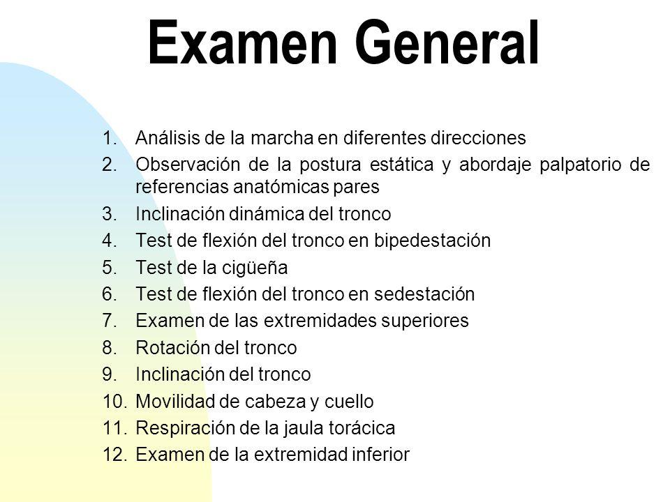 Examen General 1.Análisis de la marcha en diferentes direcciones 2.Observación de la postura estática y abordaje palpatorio de referencias anatómicas