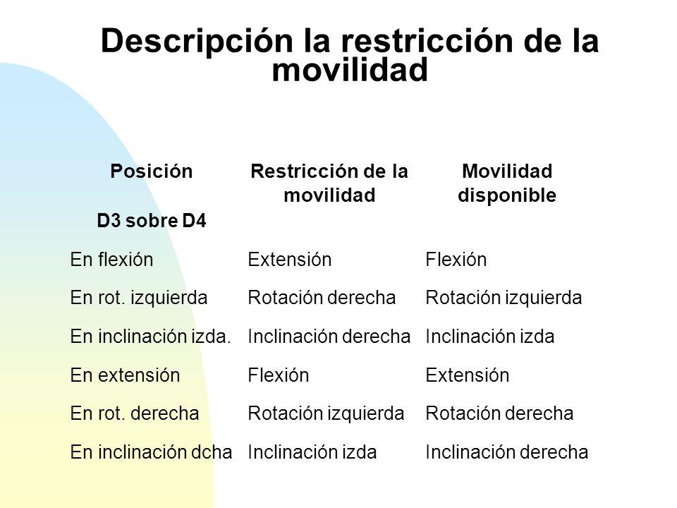 Descripción la restricción de la movilidad PosiciónRestricción de la movilidad Movilidad disponible D3 sobre D4 En flexiónExtensiónFlexión En rot.