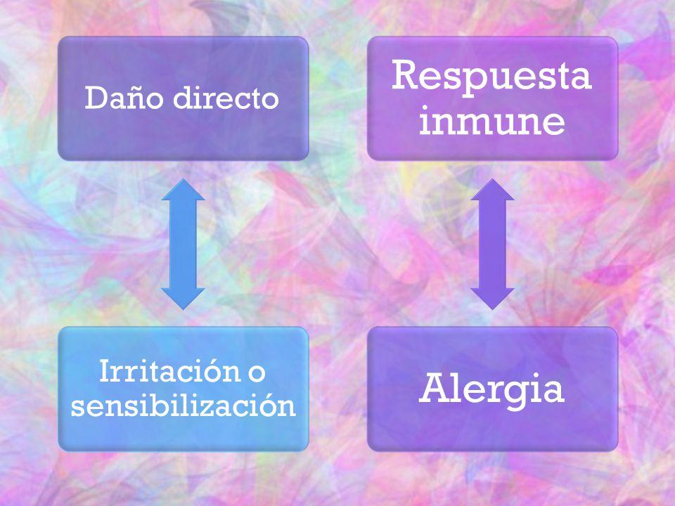 Daño directo Irritación o sensibilización Respuesta inmune Alergia
