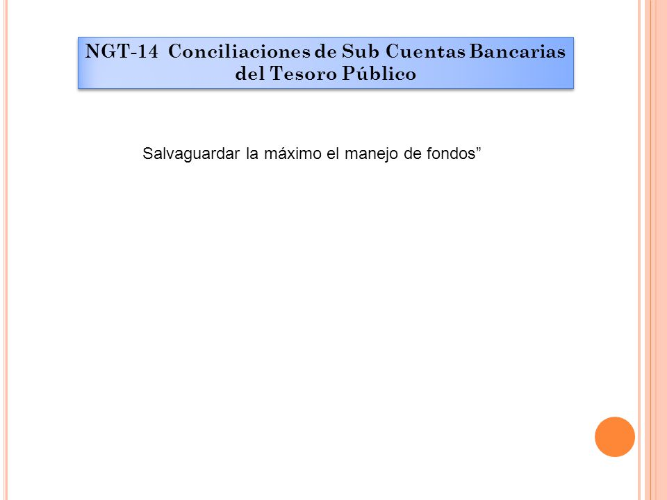 """NGT-14 Conciliaciones de Sub Cuentas Bancarias del Tesoro Público Salvaguardar la máximo el manejo de fondos"""""""