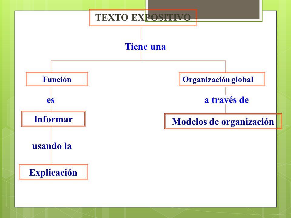 TEXTO EXPOSITIVO Tiene una Organización globalFunción esa través de Informar Modelos de organización usando la Explicación