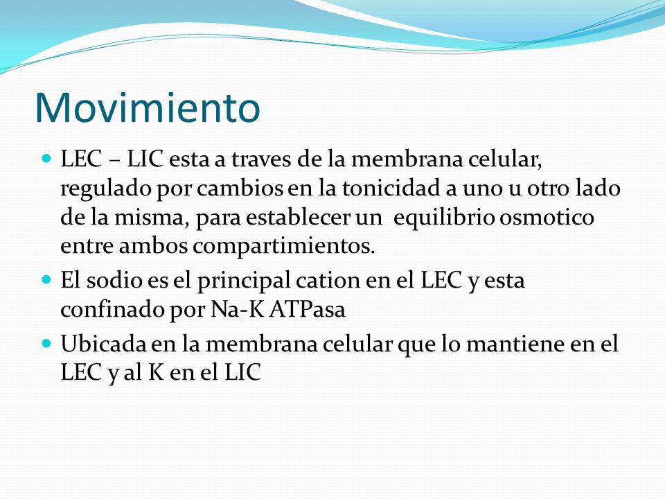 Movimiento LEC – LIC esta a traves de la membrana celular, regulado por cambios en la tonicidad a uno u otro lado de la misma, para establecer un equi