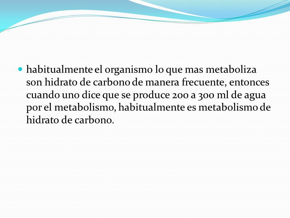 habitualmente el organismo lo que mas metaboliza son hidrato de carbono de manera frecuente, entonces cuando uno dice que se produce 200 a 300 ml de a