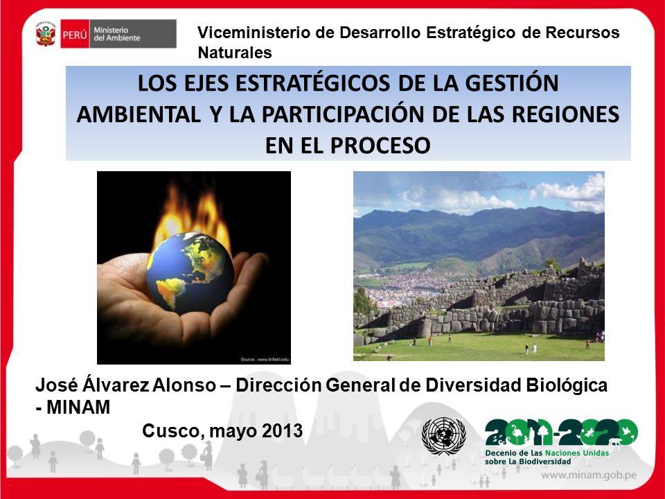 Proceso Mayo Proceso Cusco Mayo 2013