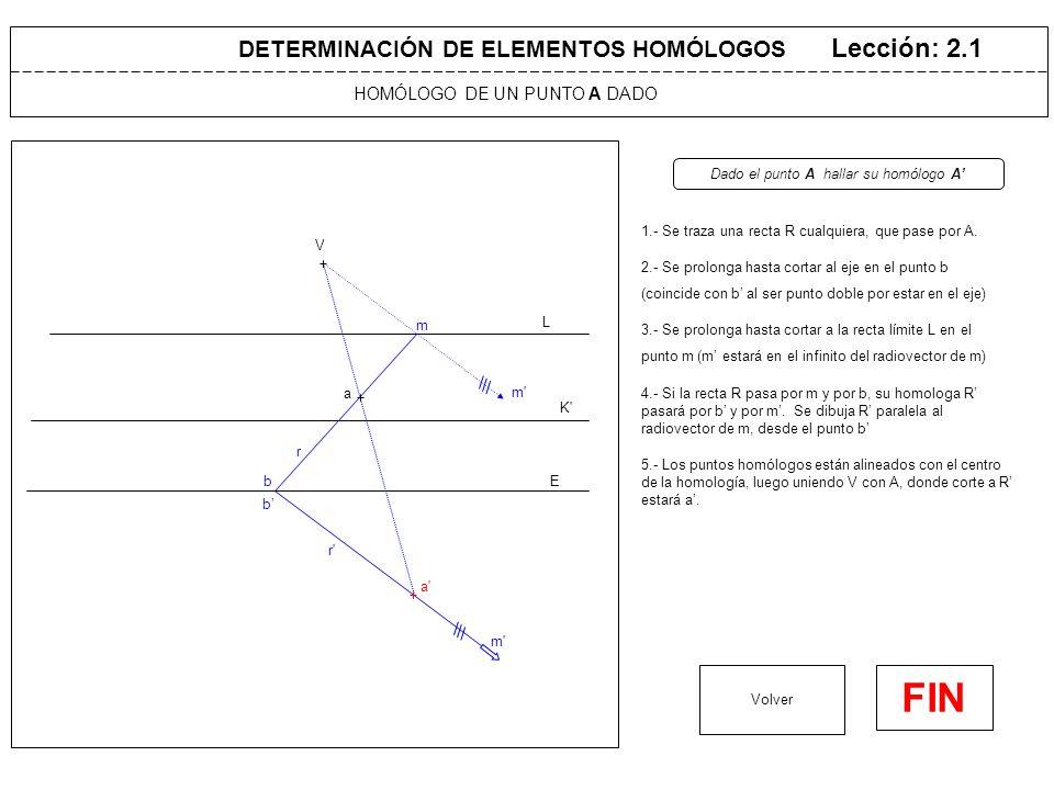 HOMÓLOGO DE UN PUNTO A' DADO Lección: 2.2 1.- Se traza una recta R' cualquiera, que pase por A' Volver FIN DETERMINACIÓN DE ELEMENTOS HOMÓLOGOS V L K E r' r a' m' m 2.- Se determina el punto b' donde corte al eje (coincide con b al ser punto doble por estar en el eje) Dado el punto A' hallar su homólogo A 3.- Se determina el punto m' donde corte a su recta límite K' (m estará en el infinito en el radiovector de m') 4.- Si la recta R' pasa por m' y por b', su homologa R pasará por b y por m.