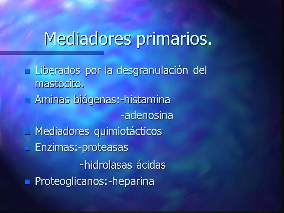 Mediadores primarios.n Liberados por la desgranulación del mastocito.