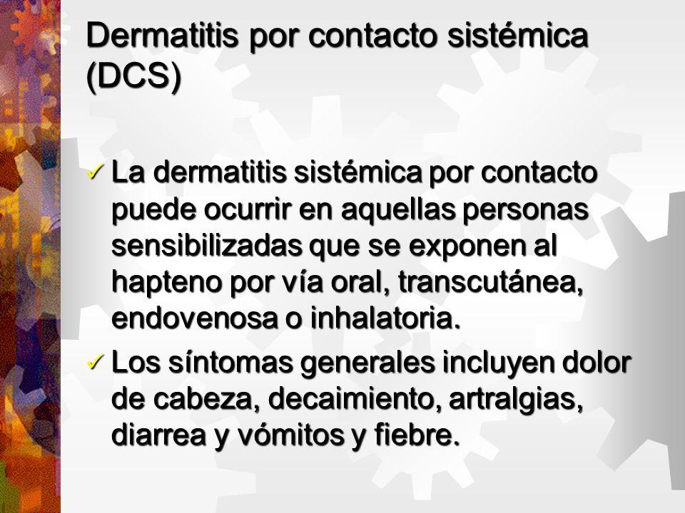 Dermatitis por contacto sistémica (DCS) La dermatitis sistémica por contacto puede ocurrir en aquellas personas sensibilizadas que se exponen al hapteno por vía oral, transcutánea, endovenosa o inhalatoria.