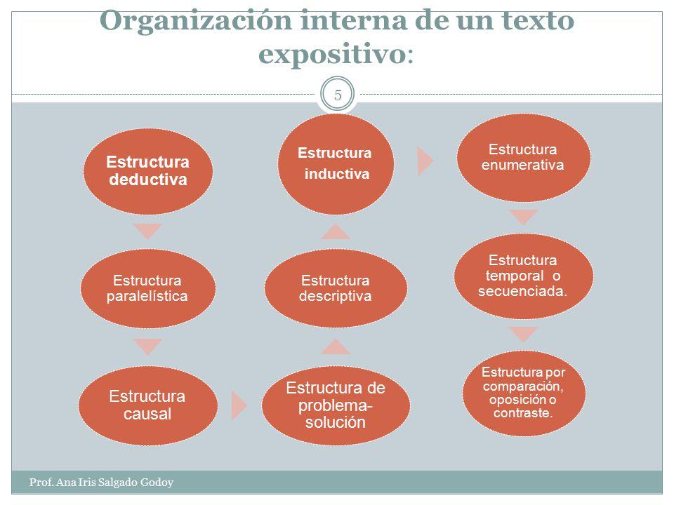 Prof.Ana Iris Salgado Godoy 4 Inicio INTRODUCCIÓN: Presenta o delimita el tema de la exposición.